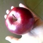 Manzana deliciosa